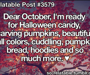autumn, fall, and hoodies image