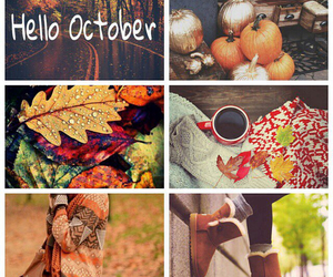 fall, leaves, and october image