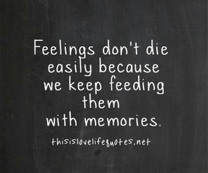 feelings, quote, and memories image