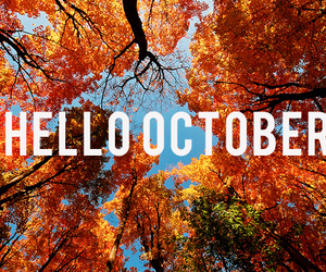 autumn, colors, and hello image