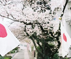 japan and flag image