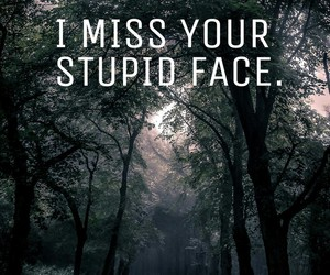face, miss, and stupid image