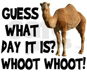 hump, wednesday, and day image