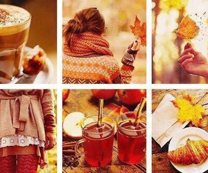 autumn, coffe, and wallpaper image
