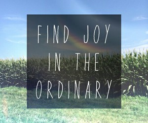 joy, quotes, and ordinary image