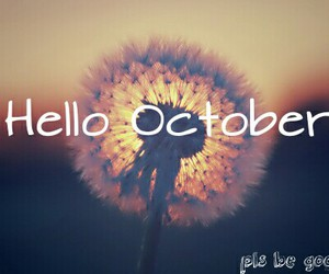 flower, hello, and months image