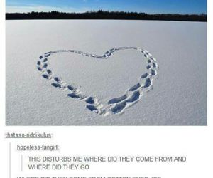 funny, tumblr, and snow image