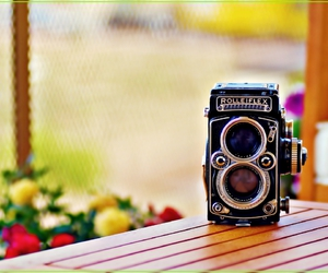 beauty, camera, and summer image