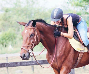 best friends, canon, and equestrian image