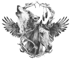 horse, animal, and wolf image
