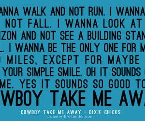 country, cowboy, and quote image