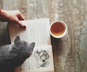 book, cat, and tea image
