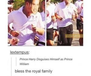 funny, royal, and tumblr image