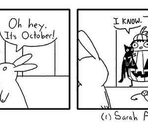 funny, october, and pumpkin image