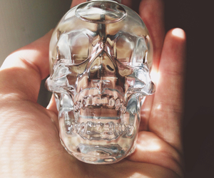 skull, grunge, and vodka image