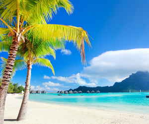 beach, sea, and bora bora image