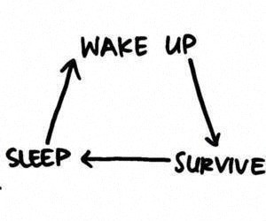 sleep, survive, and wake up image