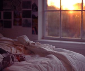 bed, sun, and window image