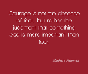 courage, life, and fear image