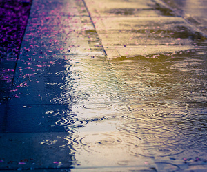 rain, raindrops, and street image