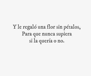 frases, love, and flores image