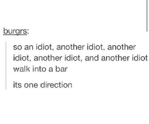 accurate, idiots, and tumblr image