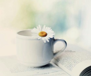books, books and flowers, and book photography image