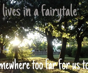 fairytale, paramore, and forest image
