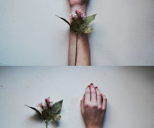 flowers, hand, and hands image