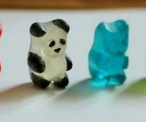 panda, bear, and food image