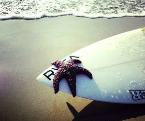 surf, beach, and star image