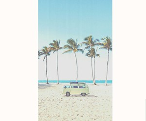 palm trees, beach, and sand image