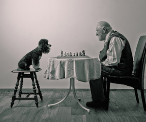 chess, old, and sepia image