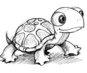 drawing, turtle, and cute image