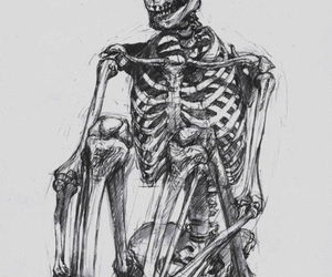 skeleton, skull, and art image