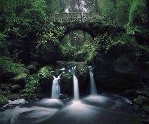 nature, bridge, and waterfall image