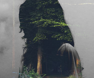fog, forest, and girl image