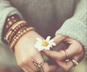 autumn, daisy, and style image
