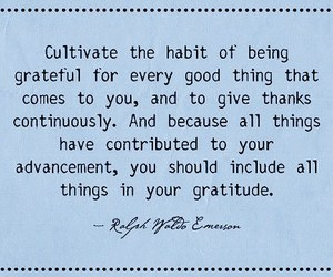 Habit, give thanks, and cultivate image