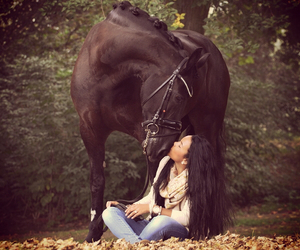 equestrian, fall, and horse image