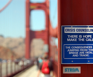 bridge, suicide, and photography image