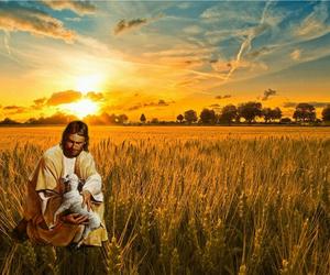 hope, jesus, and lamb image
