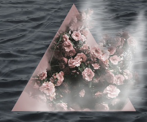 background, rose, and triangle image