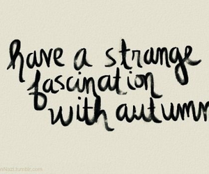 autumn, fall, and quotes image