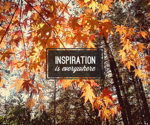everywhere, inspiration, and october image
