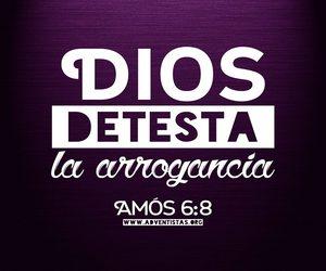 dios, amos, and biblia image