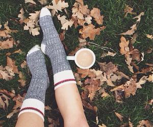 autumn, chocolate, and fall image