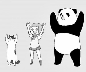 panda, anime, and cat image