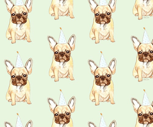 dogs and wallpaper image
