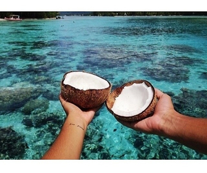 beautiful, coconut, and tropical image